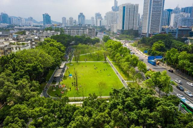 深圳绿化草坪!深圳中心区再添新公园