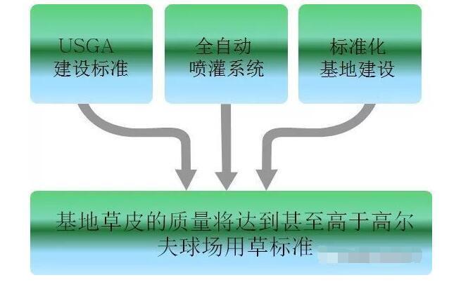 惠州茂沁绿化草坪基地