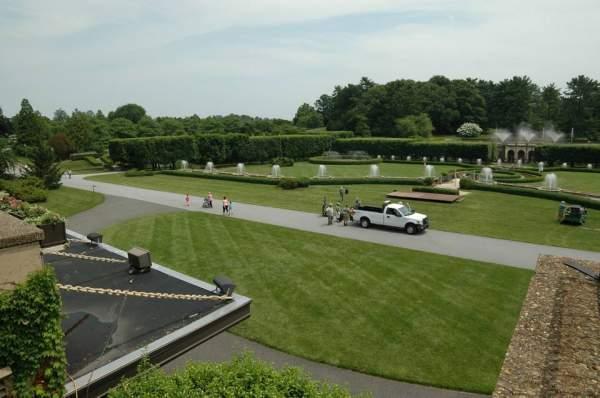 公园绿化的草坪