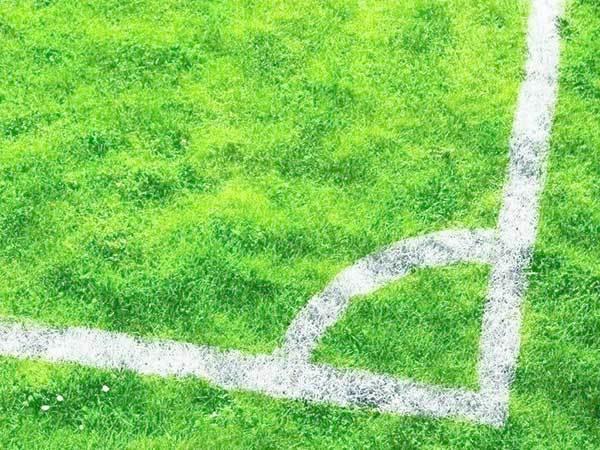 茂沁绿化草场,本草场基地绿化草皮自销-兰引三号草、兰引三号草块、兰引三号草卷进、兰引三号草坪、各种规格,按要求定制,按时发货。
