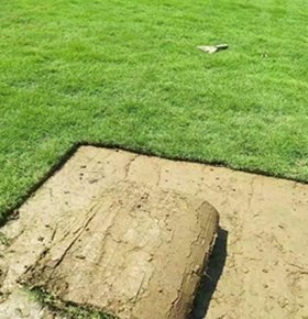 玉林玉州精品马尼拉草卷,精品草坪种植多少钱一平方
