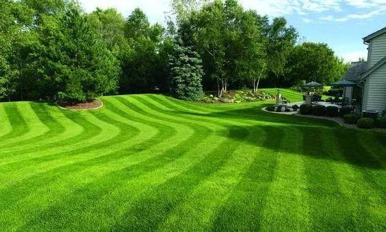修剪碎草的处理
